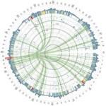 data-visualization-fusion-analytics-world